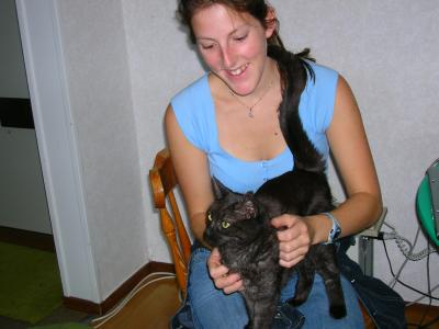 <img0*300:stuff/z/517/Cats%2520in%2520Linköping/Marie%20and%20Lilo.JPG>